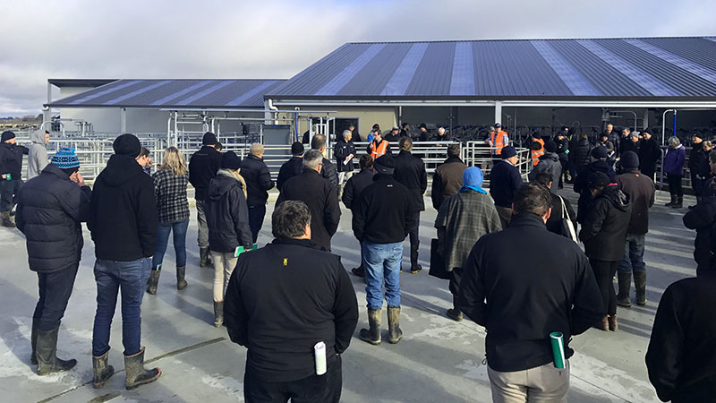 Southern Dairy Hub opening