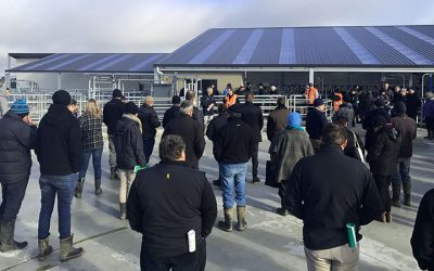 Farmers celebrate opening of Southern Dairy Hub